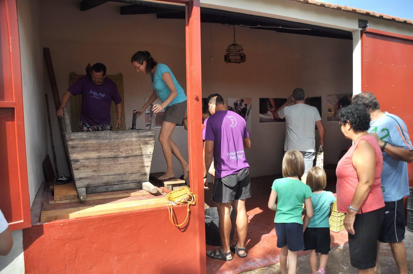 Fiesta de la Vendimia de Bodegas Faelo en Elche