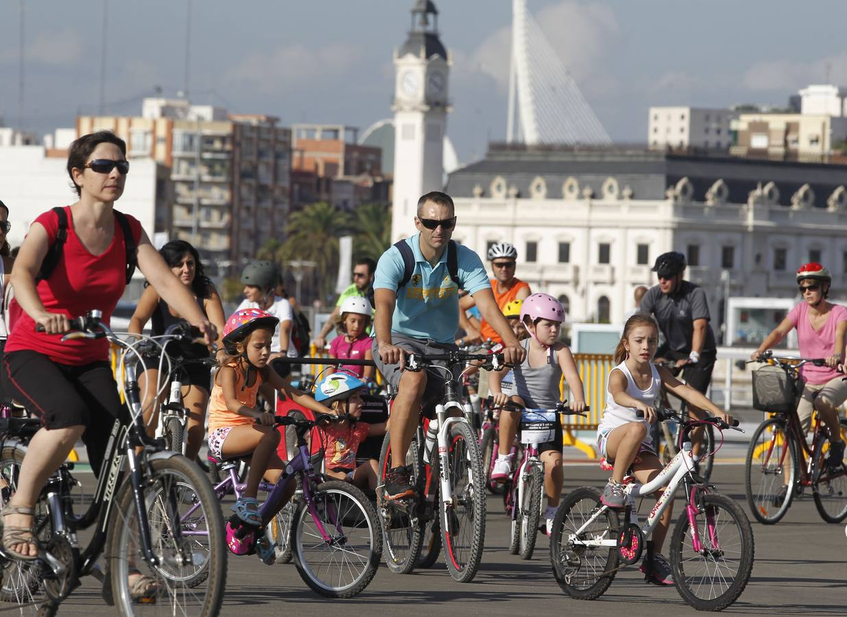 Día de la Bicicleta 2013 en Valencia
