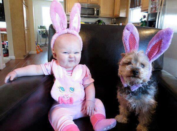 El mejor amigo de los bebés